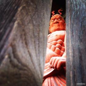 Tapınakların bodyguard'ları