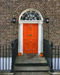Doors of Dublin1