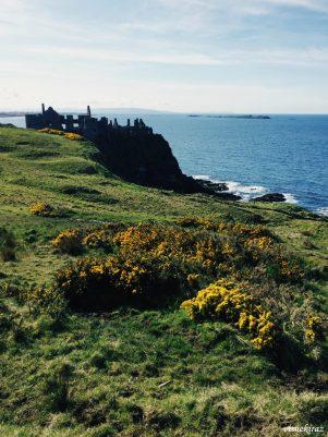 Dunluce or Greyjoys Castle