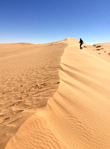 Cezayir 6